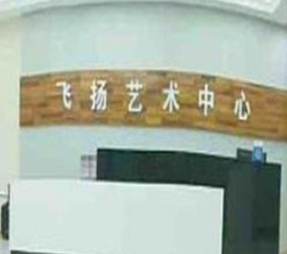 飞扬艺术中心加盟